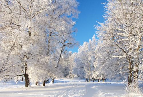 雪天空间图片 银装素裹的下雪天